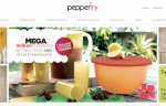 Review of Pepperfry